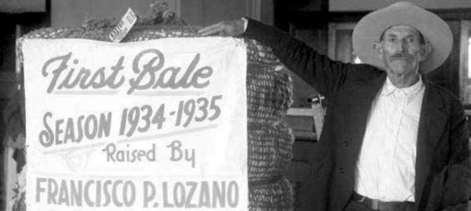 First Bale Season 1934 – 1935 Raised by Francisco P. Lozano