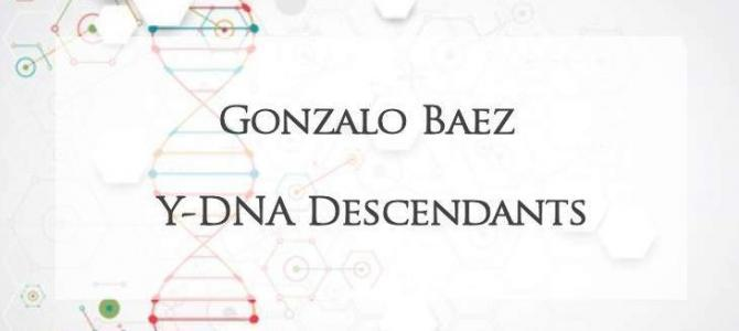 YDNA of Gonzalo Baez