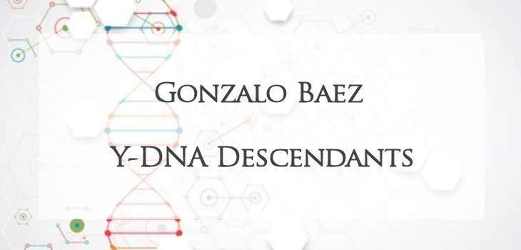 Y-DNA descendants of Gonzalo Baez